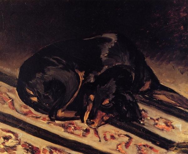 Śpiące zwierzę - pies Rita