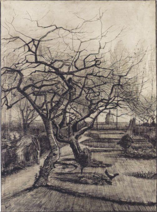 Vincent van Gogh - ogród zimowy