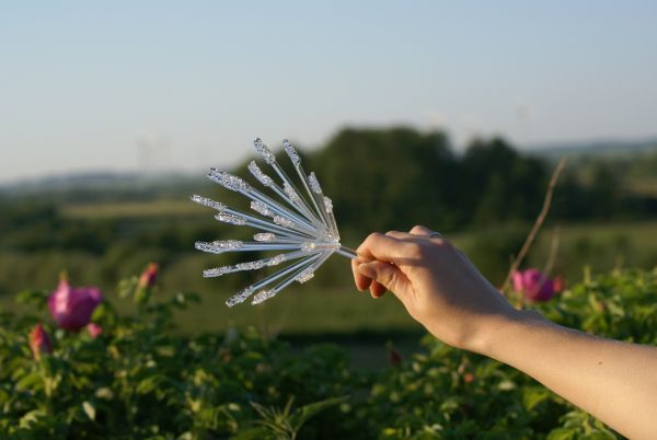 szklane kwiaty